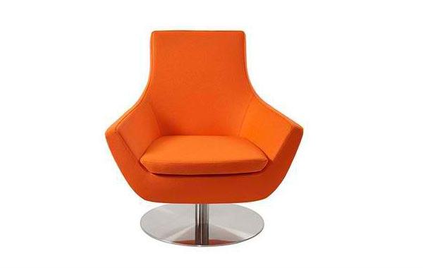 Charming Swivel Armchair