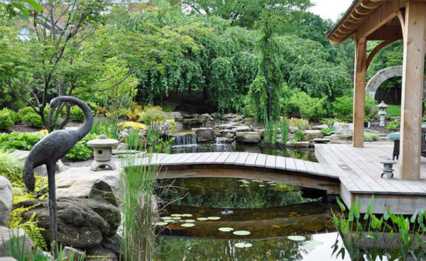 pond landscape designs