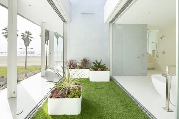 indoor lawn