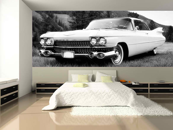 Attractive wall murals