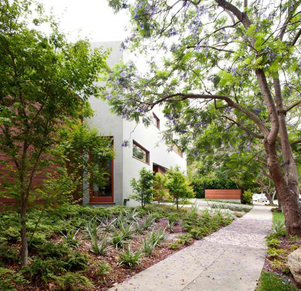 Alluring Landscape design