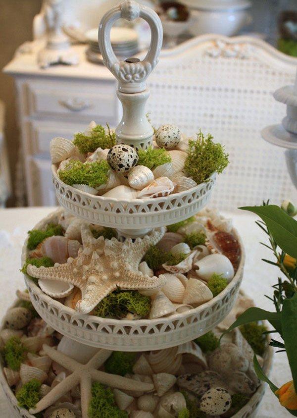 sea shell moss