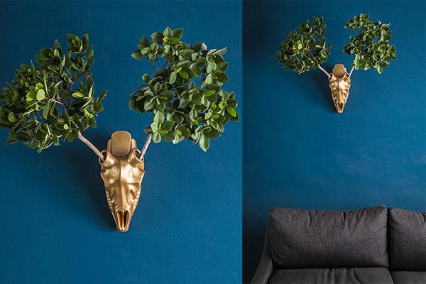 plant holder design