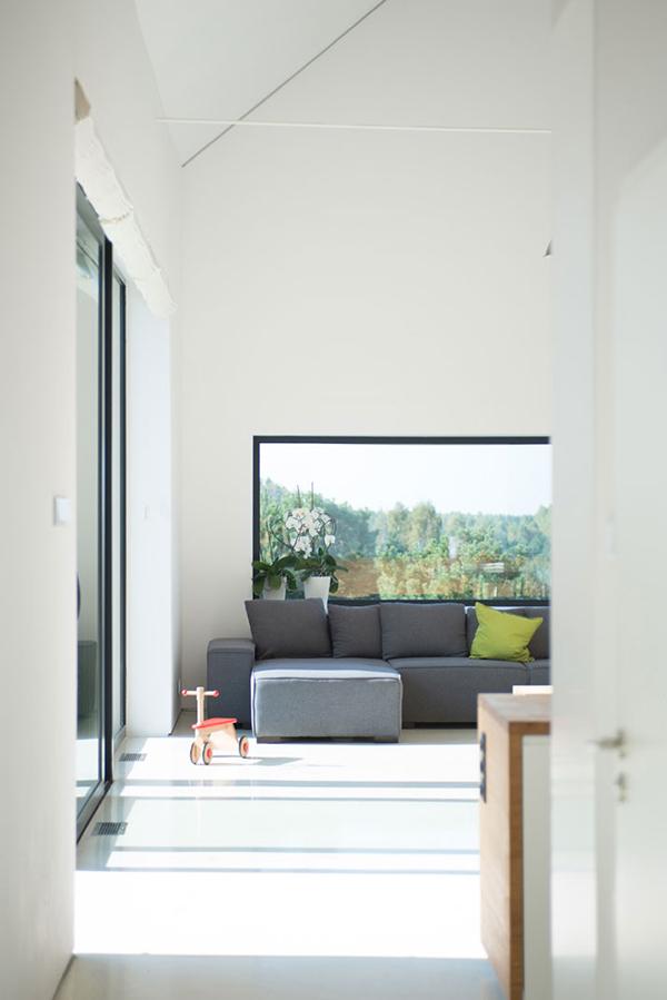 large window glass