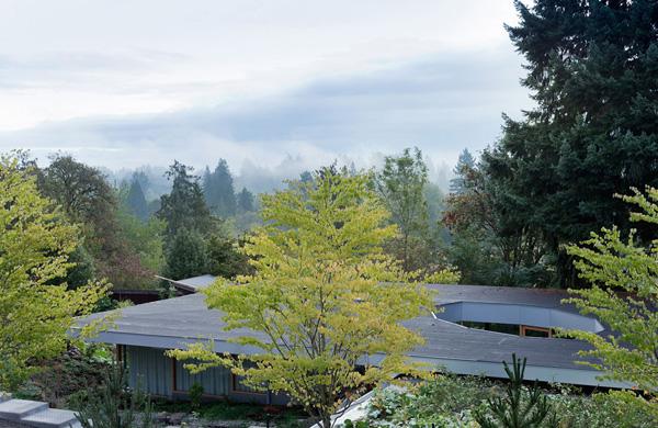 Harmonious Building landscape