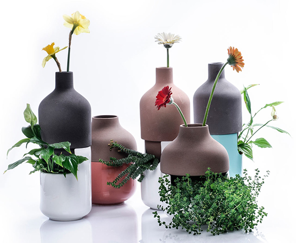 Bothles vase collection