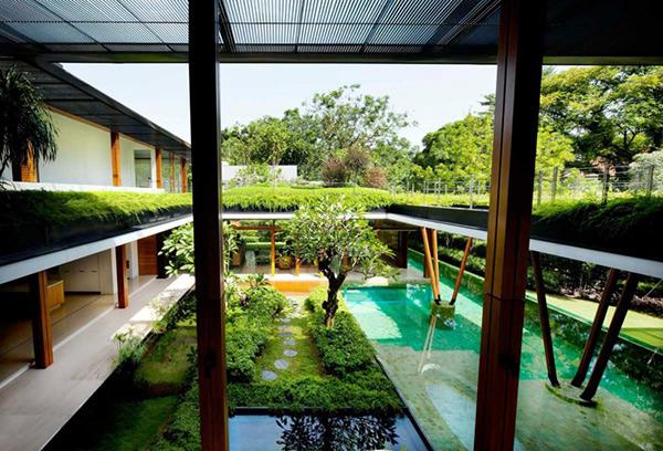 natural house design