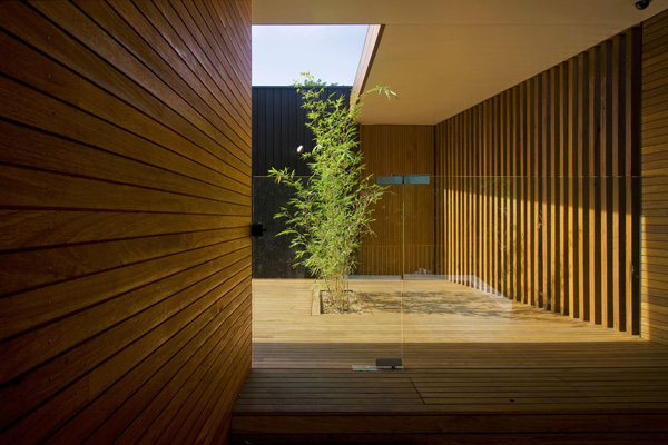 wood-inspired wall