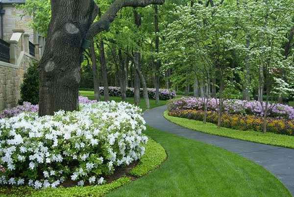 20 ways to landscape with shrubs home design lover for Home landscape design landscaping plants
