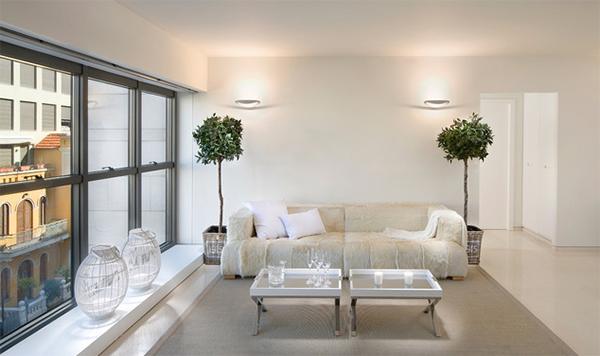 plant decors