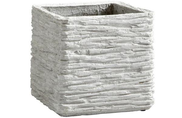 Square Fossil18