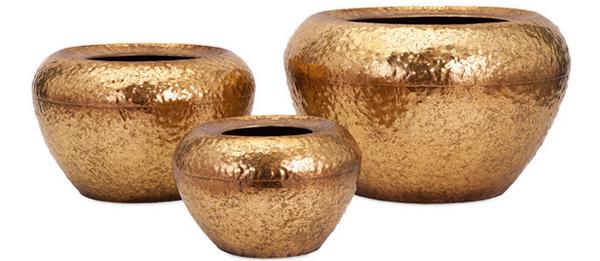 Vidalia Gold20