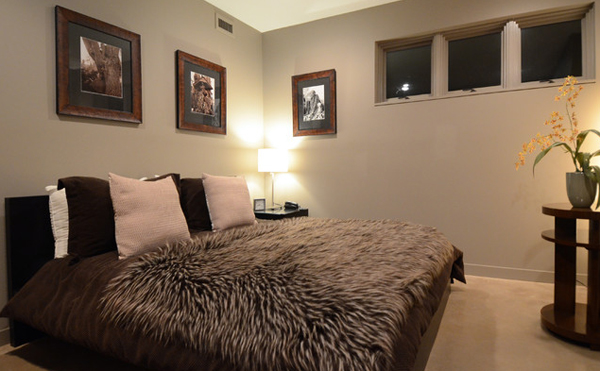 Contemporary Bedrooms animal fur