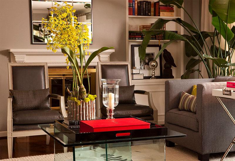 Nicolai Palm Tree Decorating Houseplants Salt Interiors