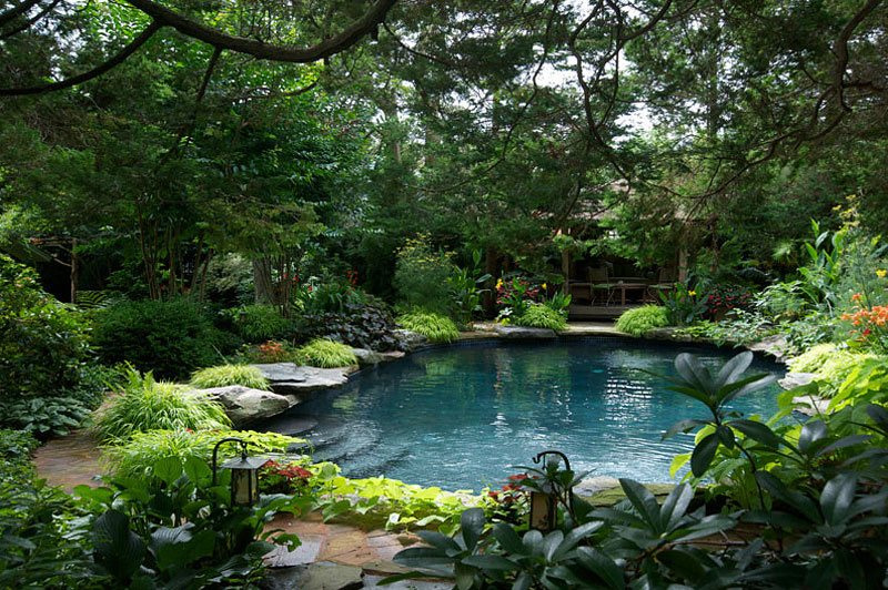 nature-themed pool