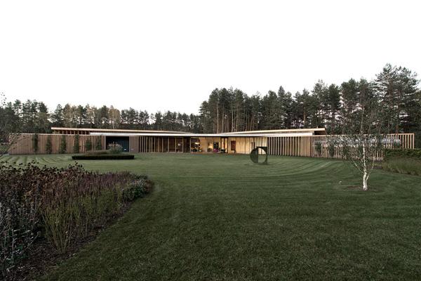 lawn landscape