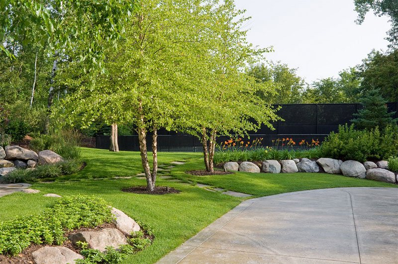 22 tree shade landscaping ideas for your yards home for Small front lawn trees