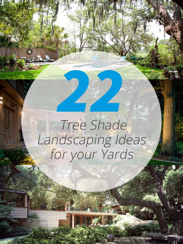 trees landscaping