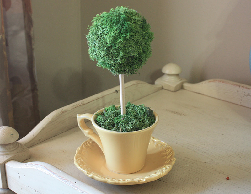 Tea Cup Topiary
