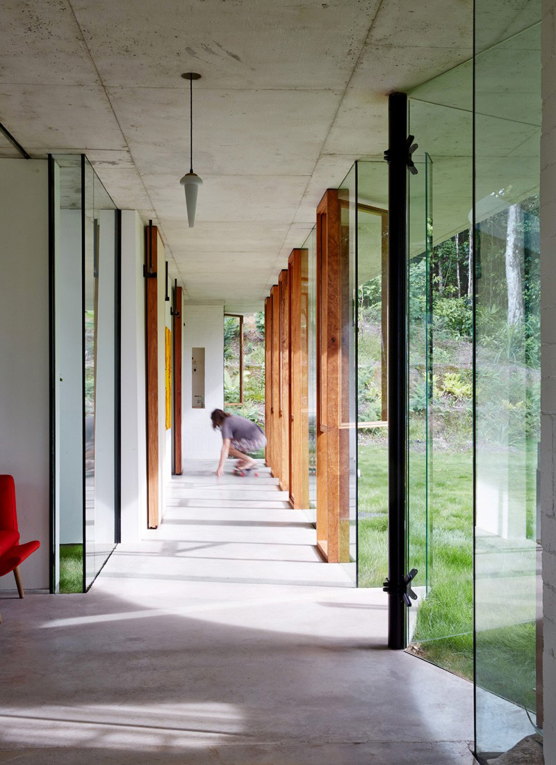 Planchonella Glass Walls