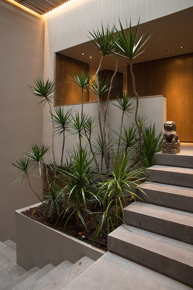 House planters