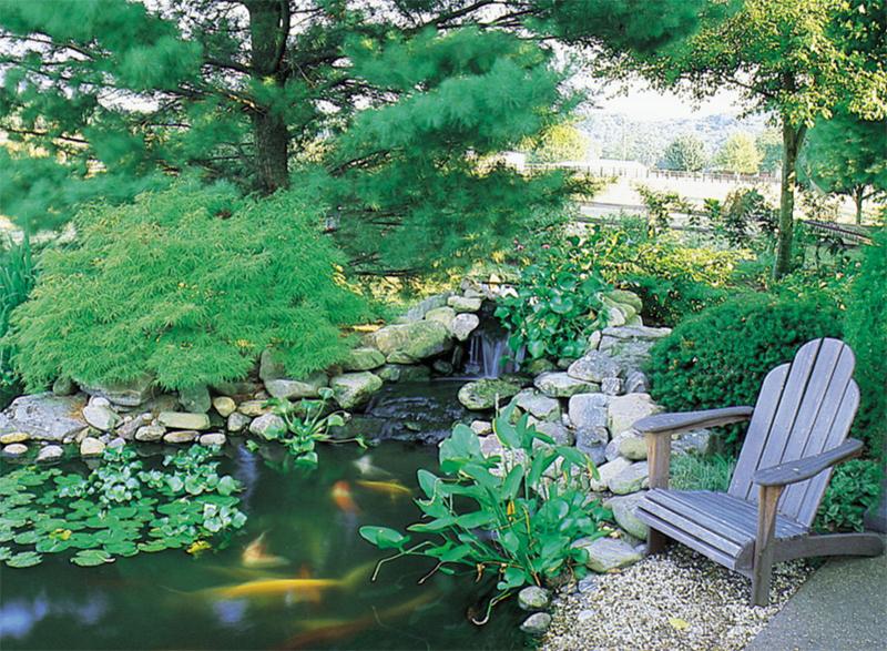 waterscape design
