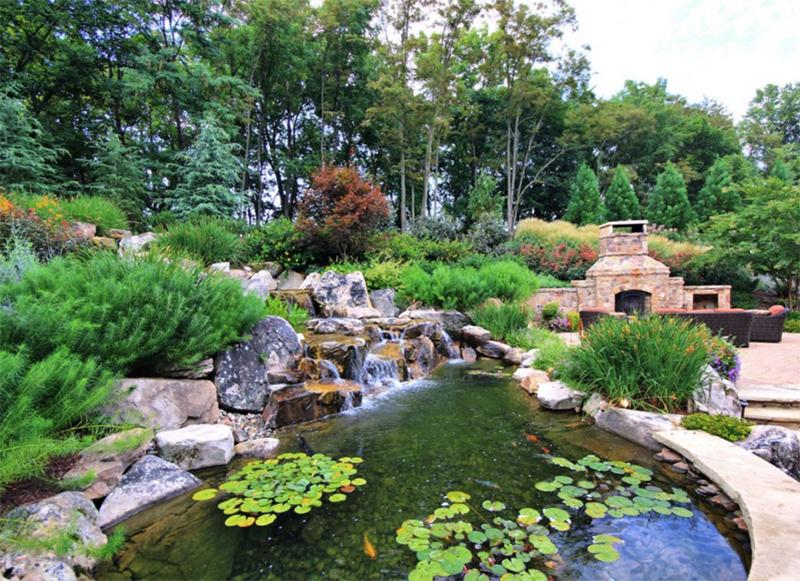 elevated pond