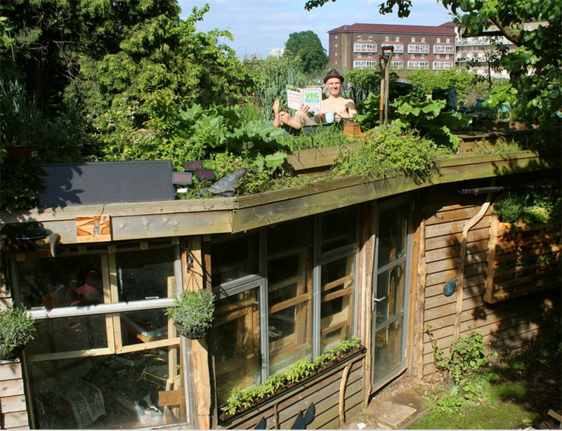 Allotment Roof Shed