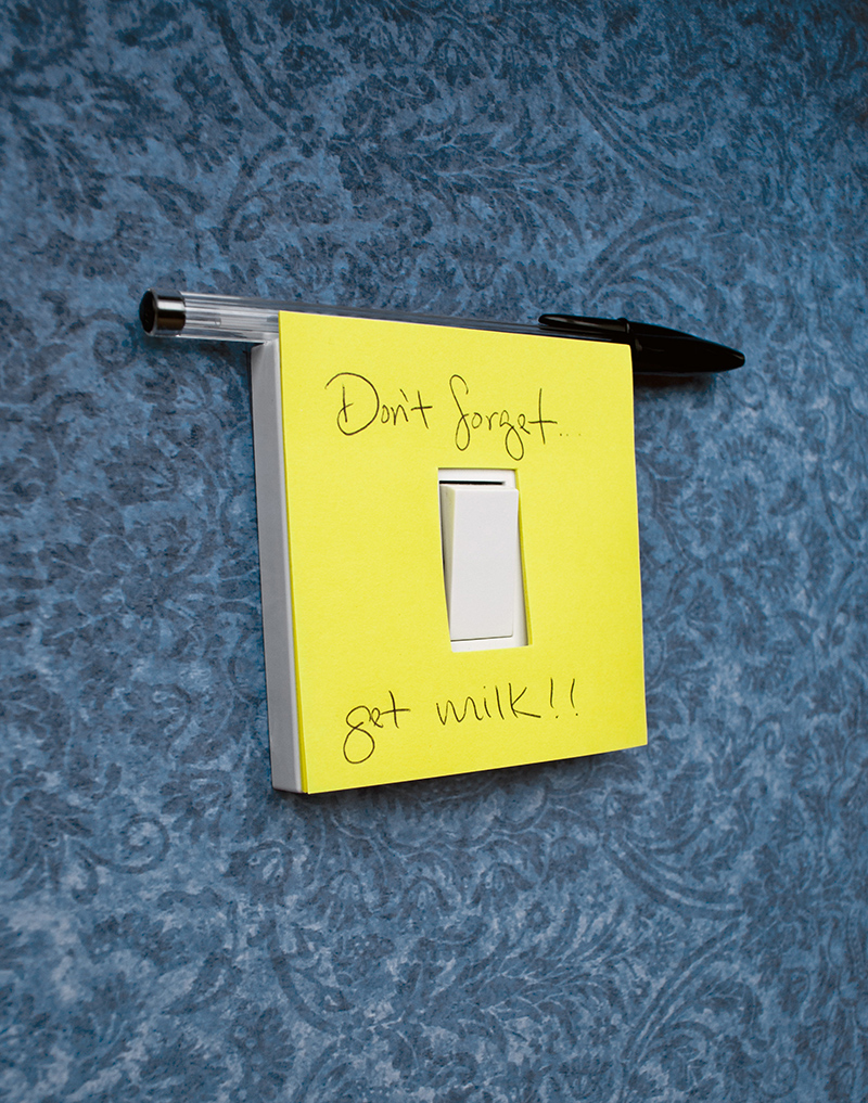 Switch Notes