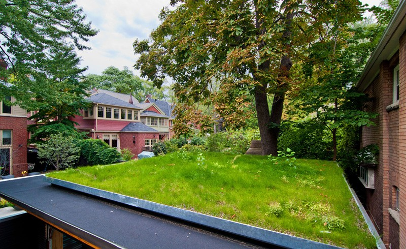 Fence Garage renovation roof garden