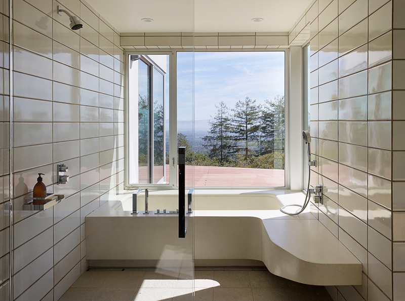 Shou Sugi Ban Siding bathroom