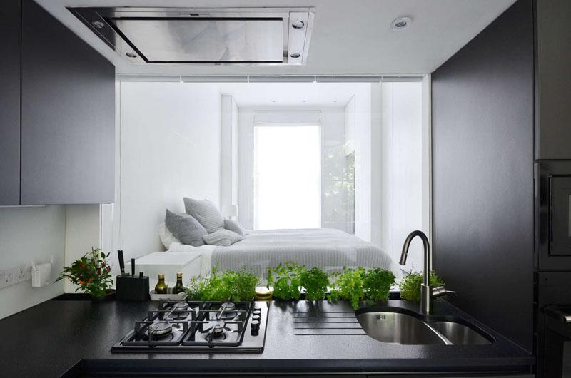 Never Square Apartment windows