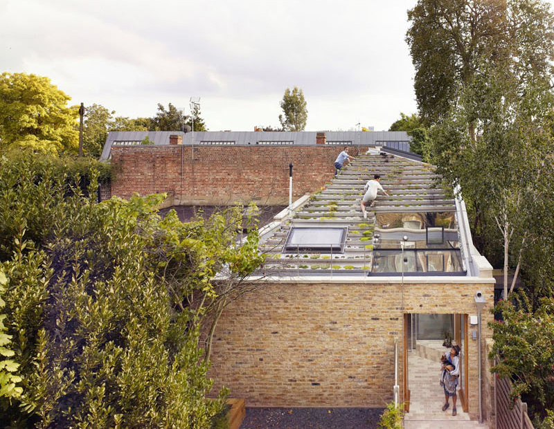 Terraced roof garden