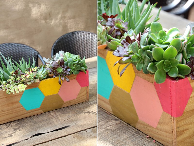 DIY Succulent Planter Box