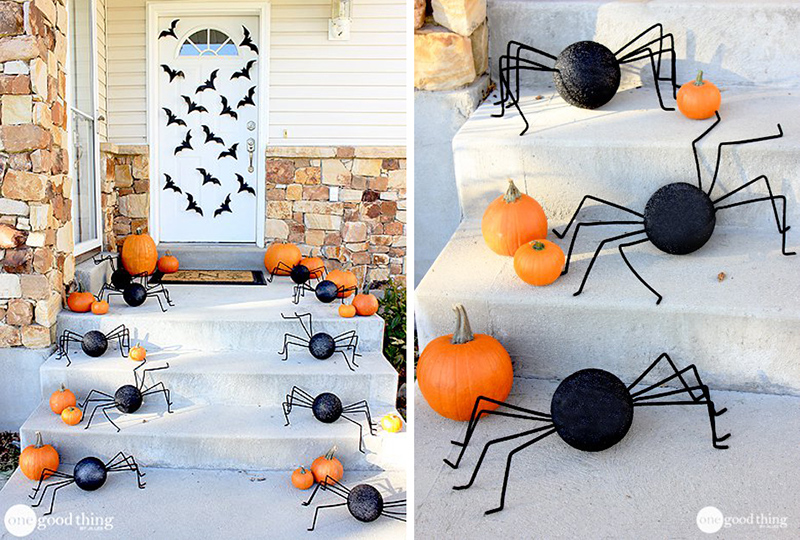 A spider and a Bat Invasion