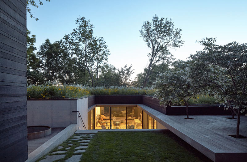 Shelton Residence roof