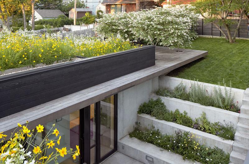 Shelton Residence steps