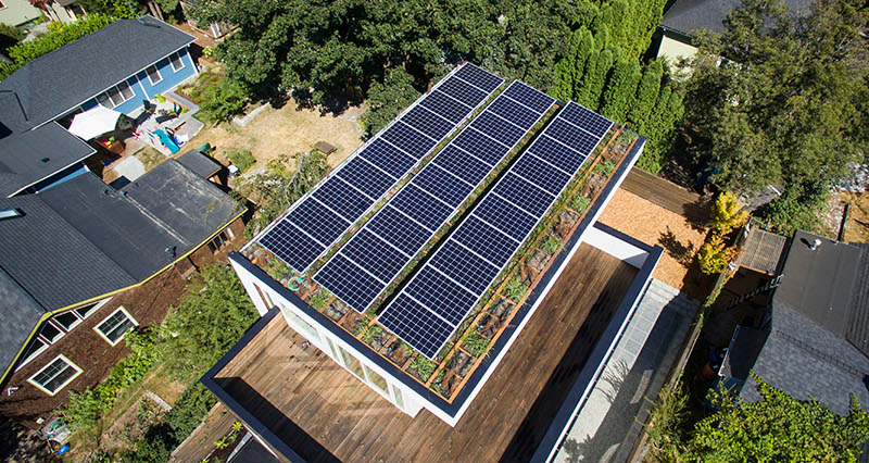 Capitol Hill 5-Star Built Green Home roof