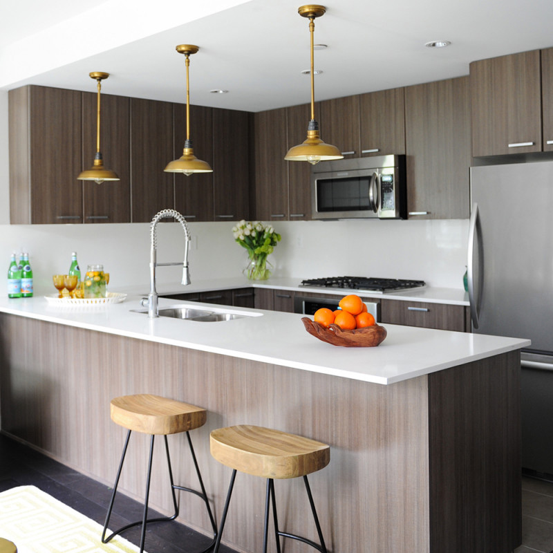 20 Perfectly Crafted Small Kitchen in Condos