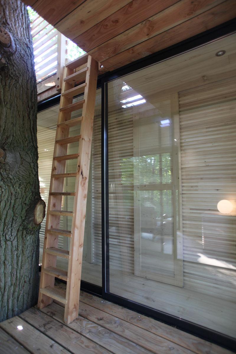 Origin House ladder