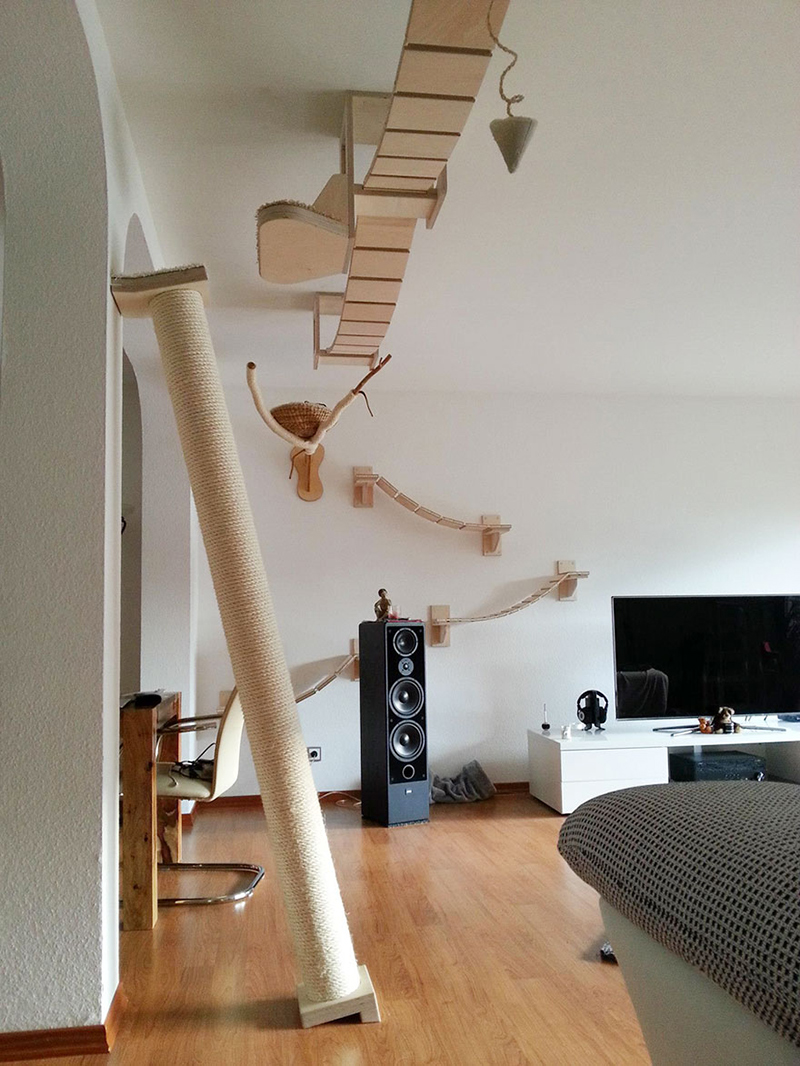 Overhead Cat Playgrounds
