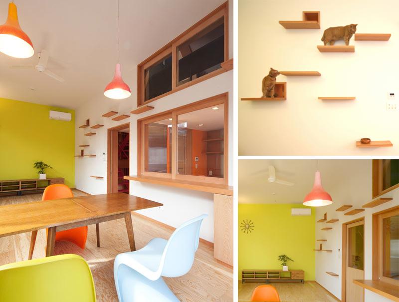 20 Creative Indoor Cat Playground Ideas Home Design Lover