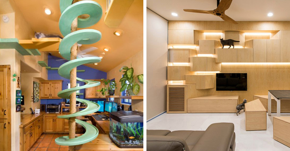20 Creative Indoor Cat Playground Ideas Home Design Lover